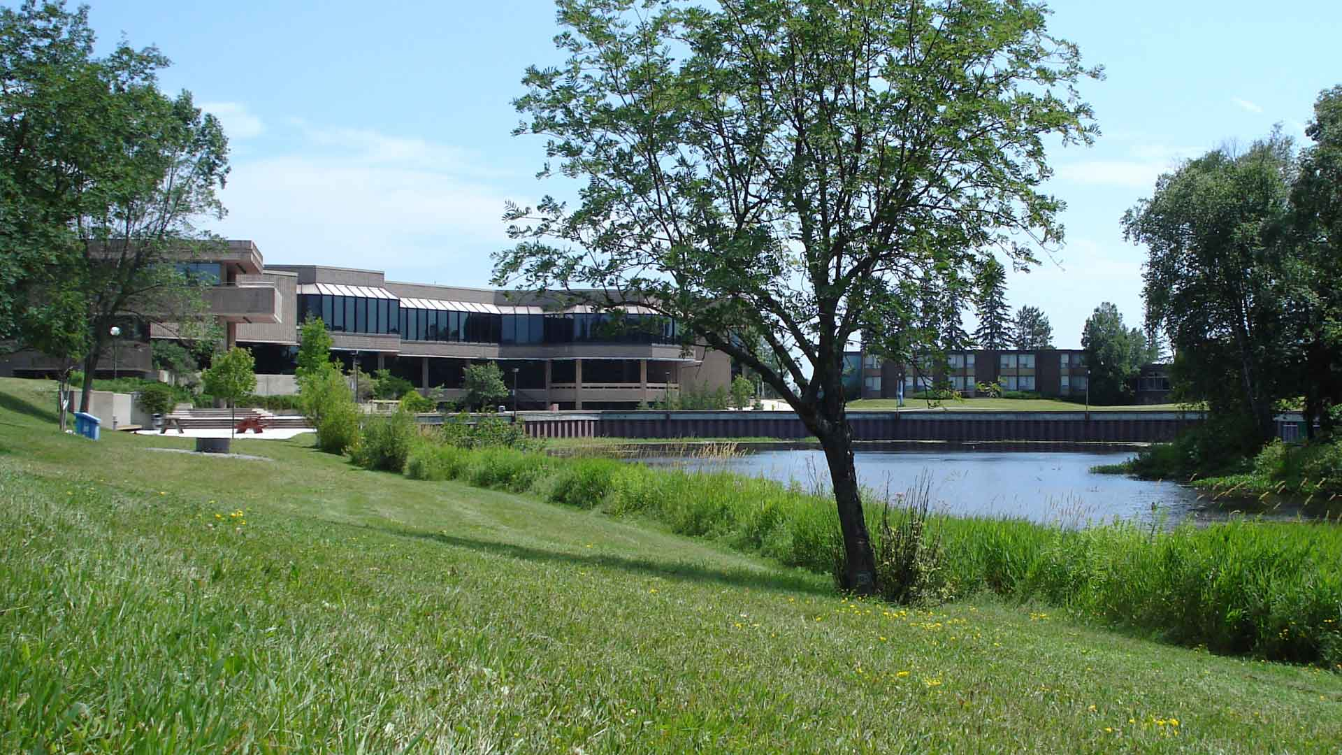 Pond and buildings on Lakehead University campus