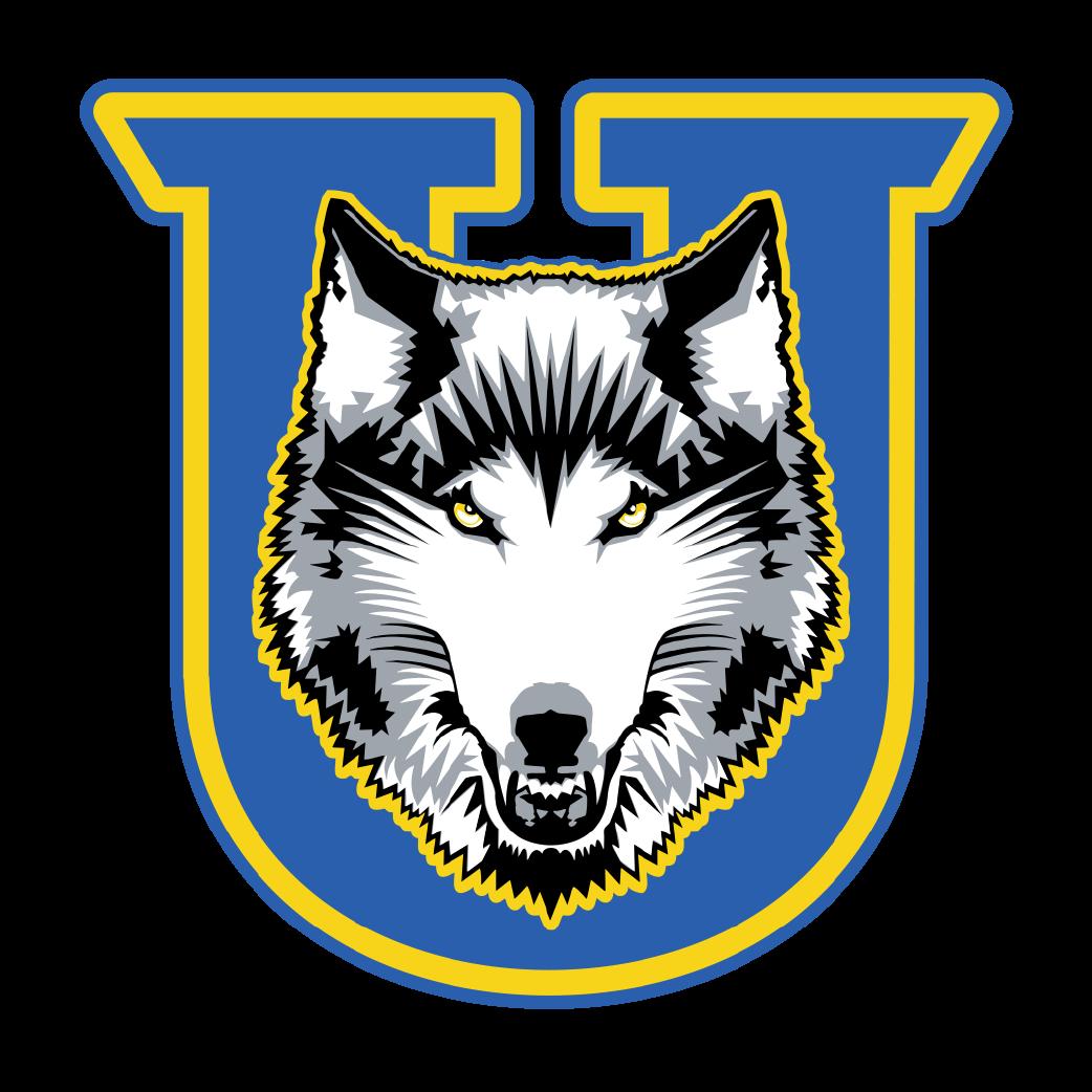 Lakehead Thunderwolves logo